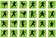 Ikonen von Karate auf dem Grün. Stockfotografie