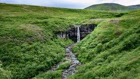 Ikonenhafter Wasserfall Svartifoss - Islands nahe durch Vatnajokull stockbild