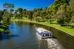 Ikonenhaftes Glotzaugeboot in Torrens-Fluss, Adelaide Lizenzfreie Stockfotografie