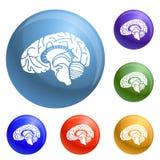 Ikonensatzvektor des menschlichen Gehirns stock abbildung