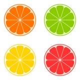 Ikonenzitrusfrucht: Orange, Kalk, Zitrone, Pampelmuse Vektor stock abbildung