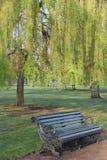 Ikonowa Londyńska parkowa ławka w wiośnie Obraz Stock