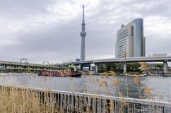 Ikonowi budynki jak widzieć od Sumida parka obrazy royalty free