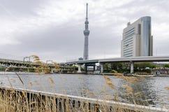 Ikonowi budynki jak widzieć od Sumida parka obrazy stock