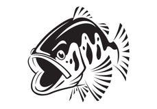 Ikony jedzenie, vectorgraphic bas ryba, wektor Zdjęcie Royalty Free