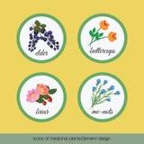 Ikony lecznicze rośliny 2 ilustracja wektor