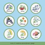Ikony lecznicze rośliny 6 royalty ilustracja