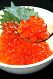 Salmon caviar, Ikura Stock Photography
