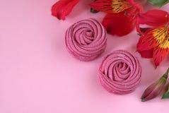 Il Alstroemeria fiorisce il fondo di carta rosa-rosso dello zefiro bianco Immagine Stock Libera da Diritti