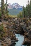 Il athabasca pittoresco cade fiume Canada Immagini Stock