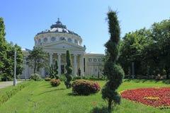 Il Athenaeum rumeno in Bucahrest Fotografia Stock Libera da Diritti