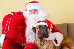Il Babbo Natale con il cane Immagini Stock