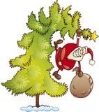 Il Babbo Natale pazzesco con il sacco sull'albero di Natale Immagine Stock Libera da Diritti