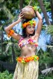 Il ballerino di hula delle Hawai porta la noce di cocco Fotografie Stock Libere da Diritti
