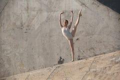 Il ballerino esile si siede in una posa di balletto Immagine Stock Libera da Diritti