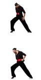 Il ballerino spagnolo in varie pose su bianco Fotografie Stock Libere da Diritti