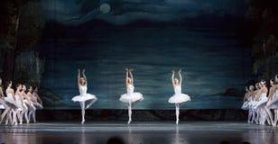 Il balletto reale russo effettua il lago swan Fotografia Stock