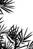 Il bambù lascia la priorità bassa della siluetta Immagine Stock Libera da Diritti