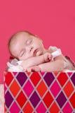 Il bambino è un regalo. Fotografia Stock