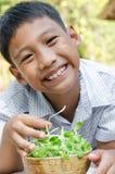 Il bambino asiatico gode di con la verdura Immagine Stock