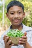 Il bambino asiatico gode di con la verdura Immagini Stock