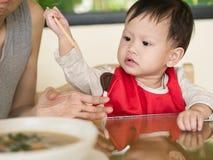 Il bambino asiatico impara mangiare i bastoncini della tenuta del pasto lei stessa Fotografia Stock Libera da Diritti