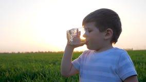 Il bambino beve l'acqua da vetro sul tramonto, sul bambino piccolo alle tenute dell'erba in vetri di mani e sull'acqua minerale, archivi video