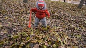 il bambino cade nel fogliame di autunno nel parco archivi video