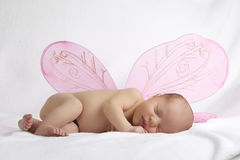 Il bambino con l'angelo dentellare traversa su priorità bassa bianca Fotografie Stock