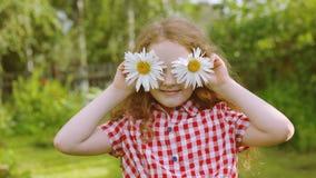 Il bambino con la margherita osserva il parco dell'estate archivi video