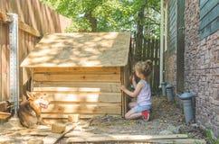 Il bambino costruisce la cabina per i cani fotografia stock