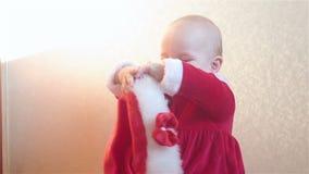 Il bambino in costume di Santa Claus tiene un cappuccio del ` s di Santa archivi video