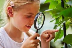 Il bambino curioso esplora con la lente di ingrandimento Immagine Stock