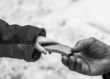 Il bambino dà all'uomo un il pezzo di pane di segale Fotografia Stock
