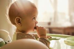 Il bambino di un anno mangia il cracker, mastica i primi denti, fondo per l'insegna circa alimenti per bambini immagine stock