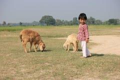 Il bambino e la pecora in è archivato Immagini Stock