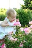 Il bambino ed è aumentato Fotografia Stock