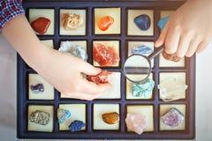 Il bambino esamina la sua raccolta dei minerali Il piccolo geologo immagini stock libere da diritti