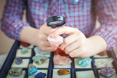 Il bambino esamina la sua raccolta dei minerali Il piccolo geologo fotografia stock libera da diritti
