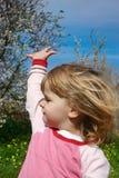 Il bambino felice con le braccia si è alzato nella gioia e nella felicità Immagine Stock