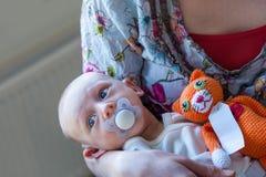 Il bambino infantile del ragazzo con una tettarella si trova nelle sue armi delle madri con un giocattolo farcito tricottato aran Fotografia Stock