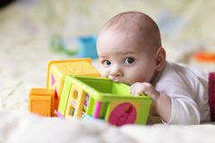 Il bambino morde il blocchetto del giocattolo Fotografia Stock Libera da Diritti