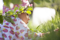 Il bambino nel giardino Fotografia Stock Libera da Diritti