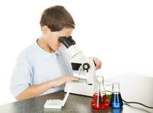 Il bambino osserva tramite il microscopio Fotografia Stock
