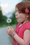 Il bambino rosso dei capelli soffia su un fiore Fotografie Stock