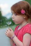 Il bambino rosso dei capelli soffia su un fiore Fotografia Stock