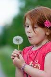 Il bambino rosso dei capelli soffia su un fiore Immagine Stock Libera da Diritti