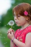 Il bambino rosso dei capelli soffia su un fiore Immagine Stock