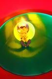 Il bambino scivola nel campo da giuoco dello scorrevole del tunnel Fotografia Stock Libera da Diritti