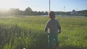 Il bambino si allontana dalla macchina fotografica sull'erba verde Il ragazzino intraprende i suoi primi punti su un'erba fresca  video d archivio